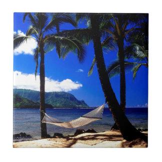 Petit somme tropical Kauai Hawaï d'après-midi d'îl Petit Carreau Carré