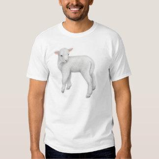 Petit T-shirt d'agneau