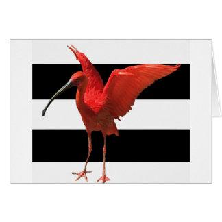 Petite carte rouge de cigogne