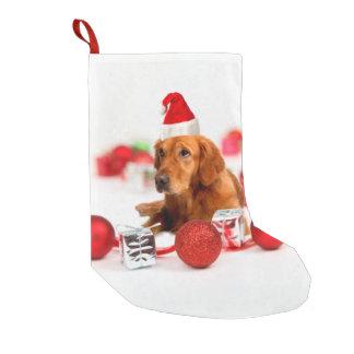 Petite Chaussette De Noël Casquette rouge du chien W Père Noël de golden