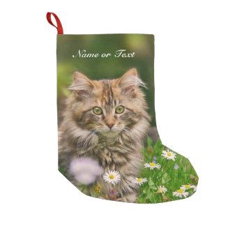 Petite Chaussette De Noël Chat mignon de chaton de ragondin du Maine -