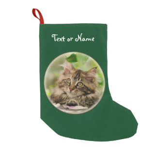 Petite Chaussette De Noël Chaton mignon de chat de ragondin du Maine - Père