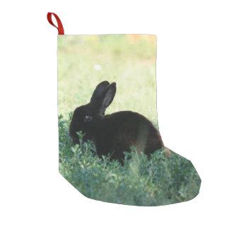 Petite Chaussette De Noël Dos noir de rouge de lapin de Lil