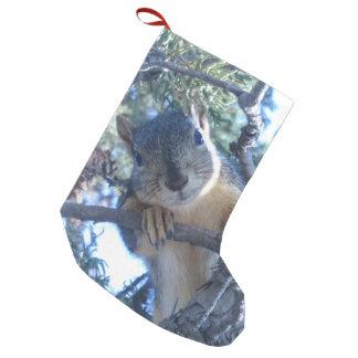 Petite Chaussette De Noël Écureuil dans l'arbre -