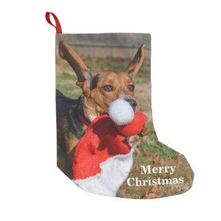 Petite Chaussette De Noël Oreilles drôles de beagle agitant le casquette de