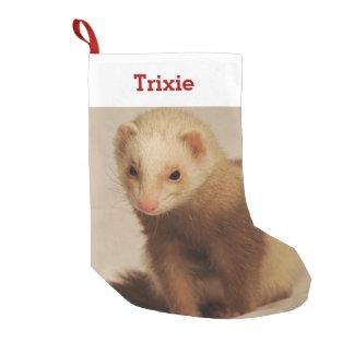 Petite Chaussette De Noël Photo et nom d'amant de furet d'animal familier