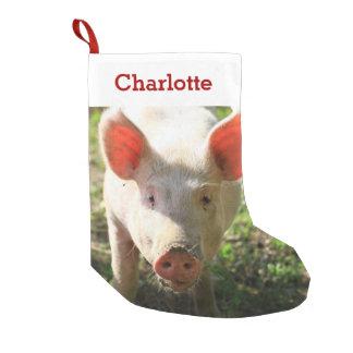 Petite Chaussette De Noël Photo et nom d'amant de porc d'animal familier