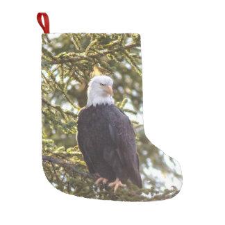 Petite Chaussette De Noël Un d'un bas aimable pour cet amant d'Eagle
