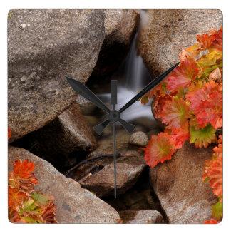 Petite crique en automne, la Californie Horloge Carrée