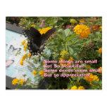 petite mais appréciée carte de papillon carte postale