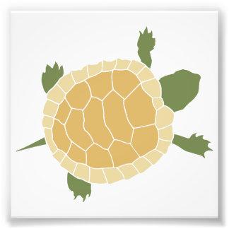 Petite tortue de rampement mignonne de tortue tirage photo
