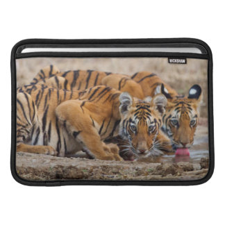 Petits animaux de tigre royaux de Bengale au point Poches Pour Macbook Air
