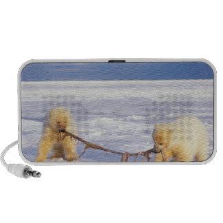 Petits animaux et viande d'ours blanc sur la banqu haut-parleur iPhone
