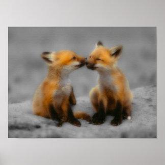 Peu d'amour de Fox Affiche
