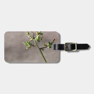 Peu de bourgeon floraux étiquette pour bagages