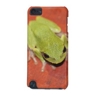 Peu de caisse verte de contact d'iPod de grenouill
