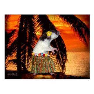 Peu de carte postale de miel de danse polynésienne