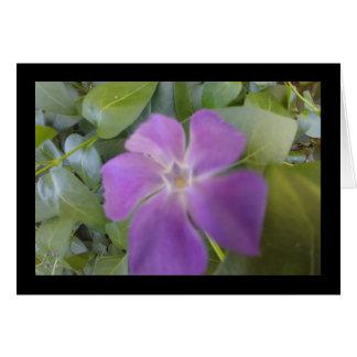 Peu de chanson pourpre de fleur de solénoïde. Le Carte De Vœux