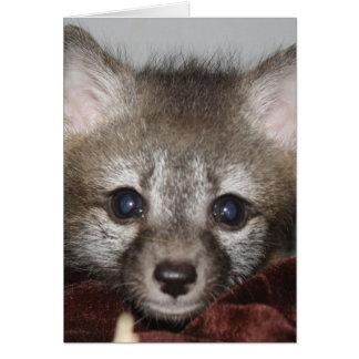 Peu de Fox Carte De Vœux