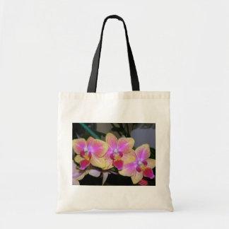 Phalaenopsis Sacs Fourre-tout