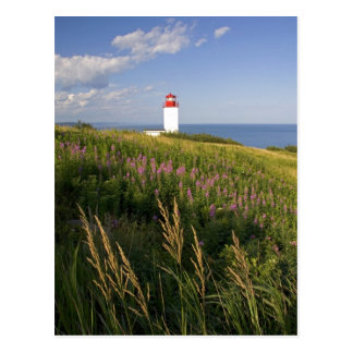 Phare à St Martins, Nouveau Brunswick, 2 Carte Postale