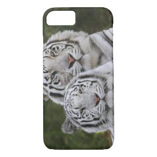 Phase blanche, tigre de Bengale, Tigre Coque iPhone 7