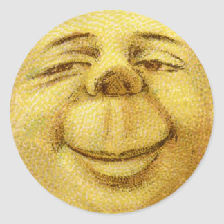 Phoques heureux d'autocollants d'enveloppe de lune sticker rond