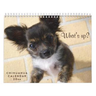 Photo 2018 de calendrier de chiwawa ce qui est