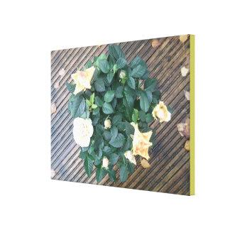Photo 2 de rose jaune toiles