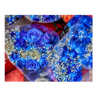 Photo bleue magnifique de roses cartes postales