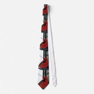 Photo cardinale du nord cravates