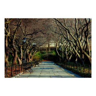 Photo conservatrice de paysage de Central Park Poster