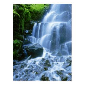 Photo d'amende de cascade du fleuve Columbia Carte Postale