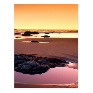 Photo d'amende de coucher du soleil de port de carte postale