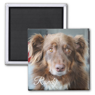 Photo de chien et aimant personnalisés de nom