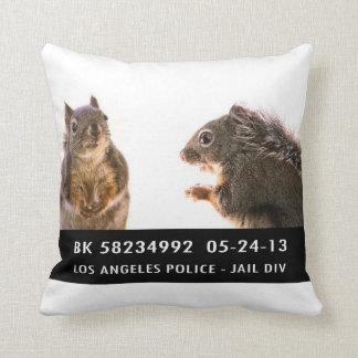 Photo de détenu d'écureuil coussin