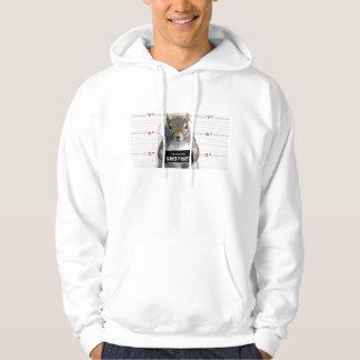 Photo de détenu d'écureuil veste à capuche
