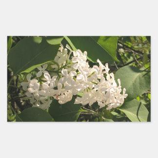 Photo de fleur avec le bel autocollant lilas blanc