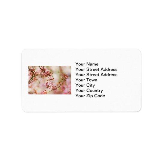 Photo de fleurs de cerisier étiquette d'adresse
