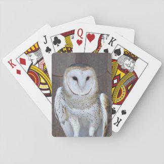 Photo de hibou de grange jeu de cartes