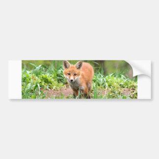 Photo de kit curieux de renard autocollant de voiture