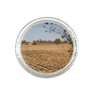 Photo de panorama de champ de maïs de l'Iowa Bagues