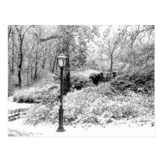 Photo de paysage de neige d'hiver de Central Park Carte Postale