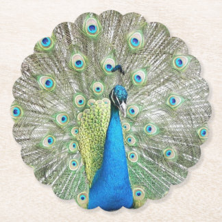 Photo de plumage de paon dessous-de-verre en papier