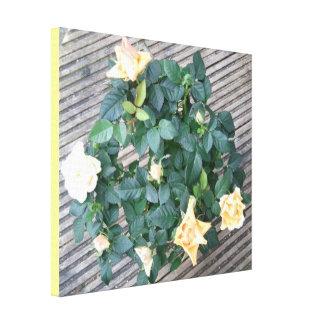 Photo de rose jaune toiles