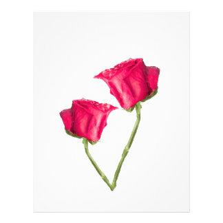 Photo de roses rouges prospectus 21,6 cm x 24,94 cm