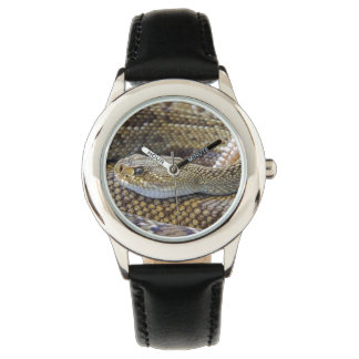 Photo de serpent à sonnettes montres cadran
