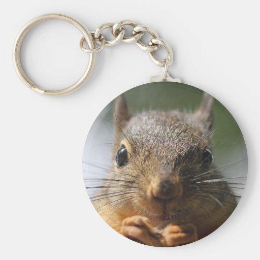 Photo de sourire d'écureuil mignon porte-clés