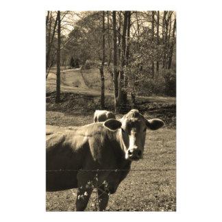 Photo de ton de sépia de vache à Brown Papier À Lettre Customisé