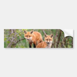 Photo des kits adorables de renard rouge autocollant de voiture